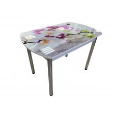 Стол обеденный Премьер раскладной (Хром + Стекло с фотопечатью, Фотопечать Орхидея 308А)